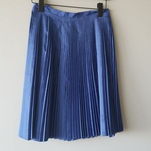 BANANA REPUBLIC | Gorgeous Blue Pleated Skirt
